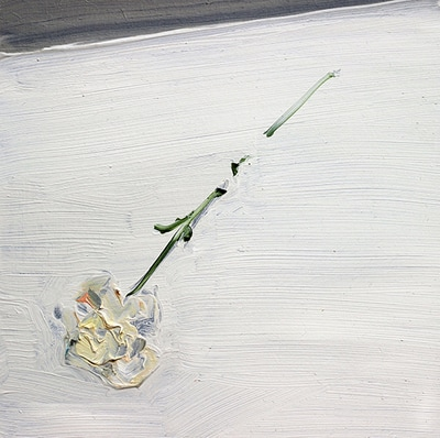 Flower - 20x20cm, Oil on Board, 2015, Martin Hill
