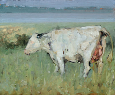 Cow - 25x32cm, Oil on Board, 2017, Martin Hill